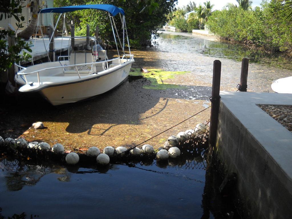 Eden Pines Canal YUK 003.JPG